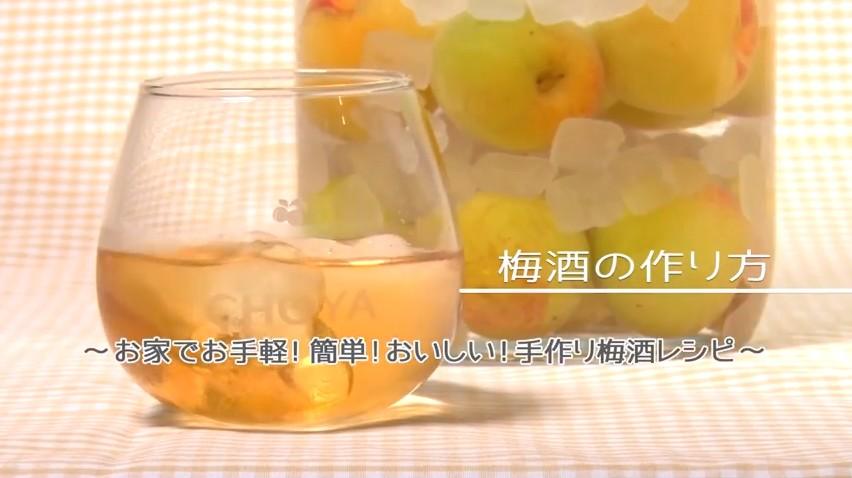 梅酒 作り方 動画