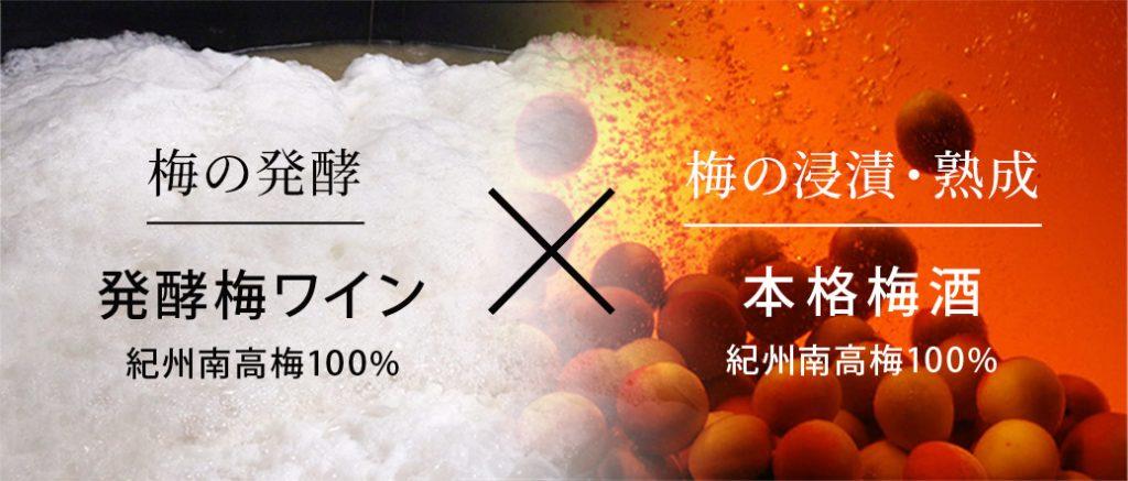 浸漬と発酵